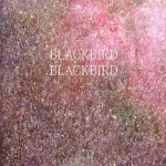 "BLACKBIRD BLACKBIRD ""Summer Heart"" [ARTPL-015]"