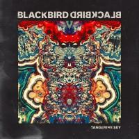 "BLACKBIRD BLACKBIRD ""Tangerine Sky"" [ARTPL-050]"