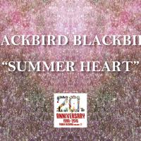 BLACKBIRD BLACKBIRDの名作『Summer Heart』がタワーレコード新宿店20周年記念で限定再プレス