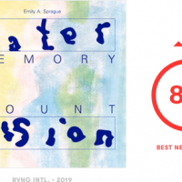 Pitchfork Best New Reissue獲得!Emily A. Sprague『Water Memory / Mount Vision』日本盤6/7発売!